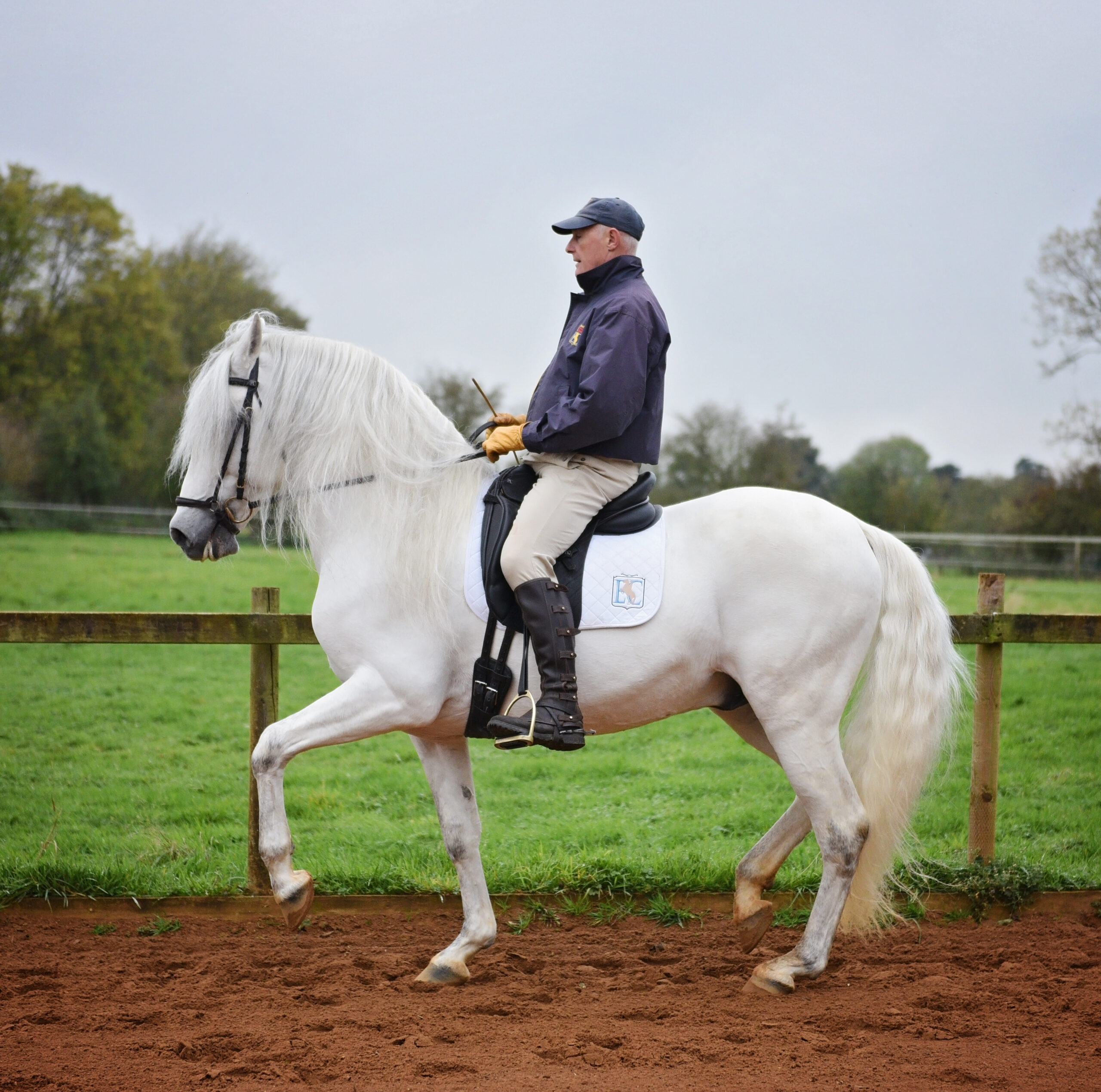Peter Maddison-Greenwell, classical dressage trainer