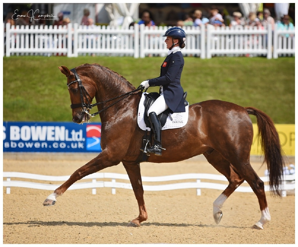 Top dressage competition