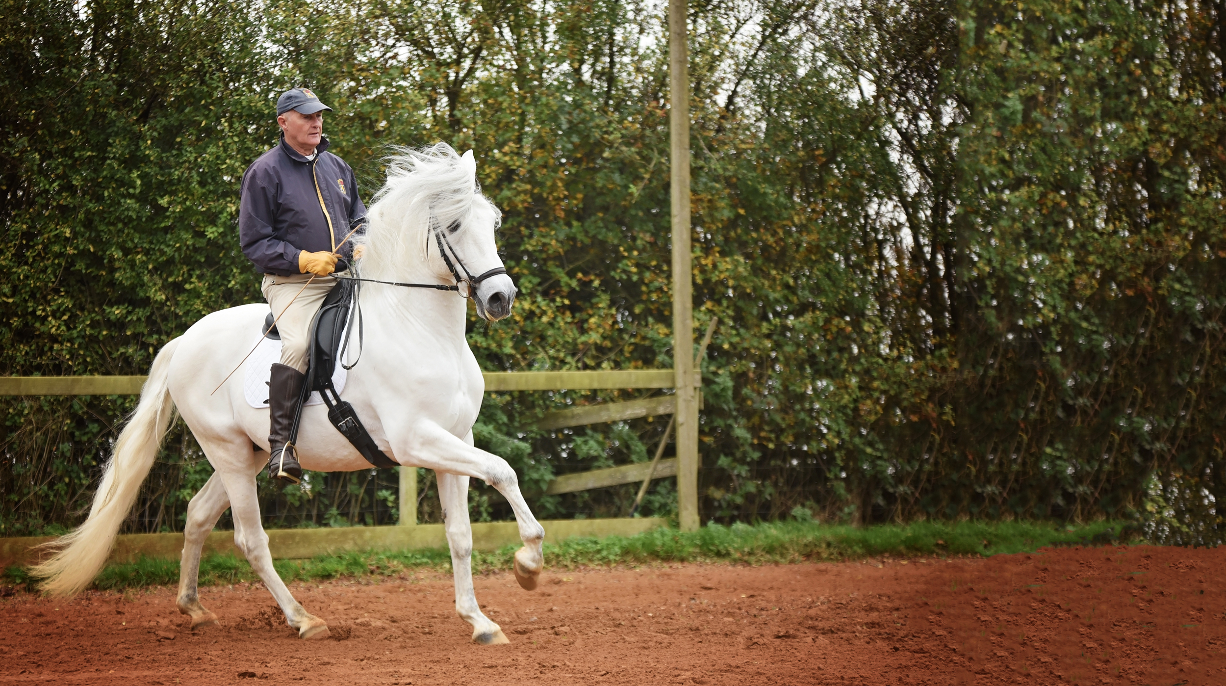 Classical Dressage rider Peter Maddison-Greenwell photographed by Emma Campbell
