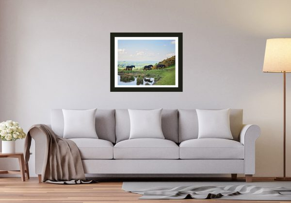 equestrian prints for your house