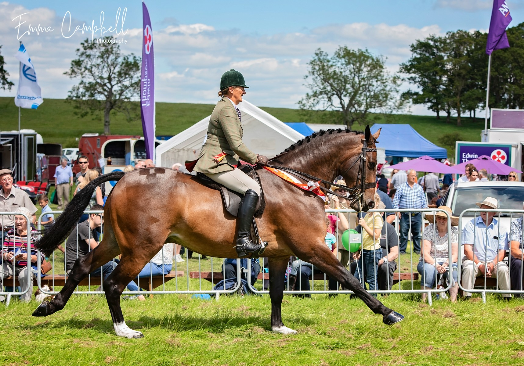 Skelton Show - Equestrian class 2019