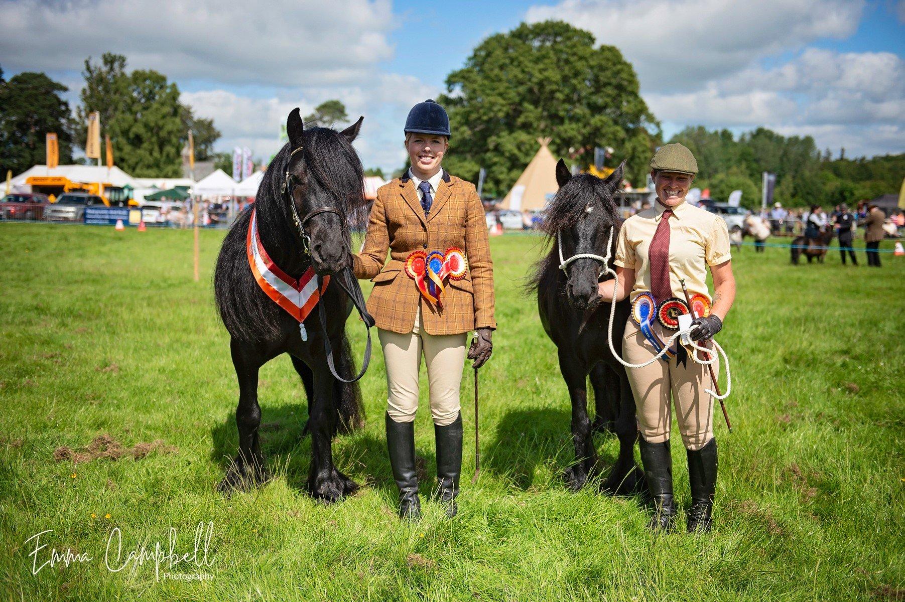 Fell pony class- Skelton Show