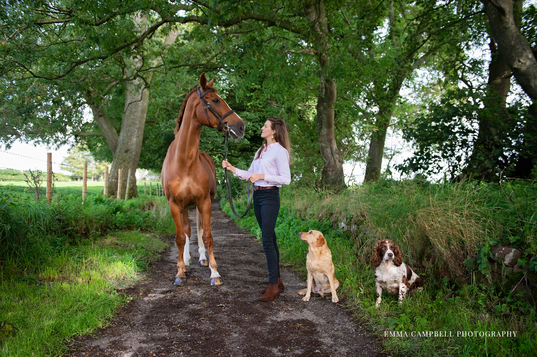 Equestrian photoshoot with dogs