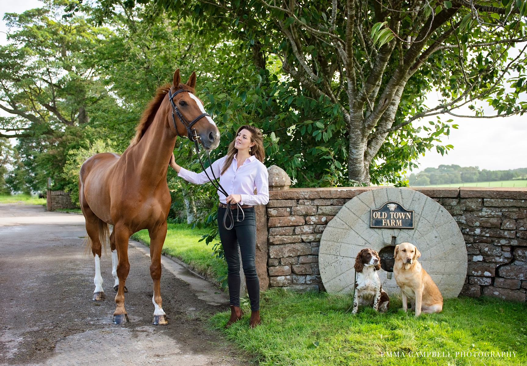 Cumbrian, equestrian photoshoot