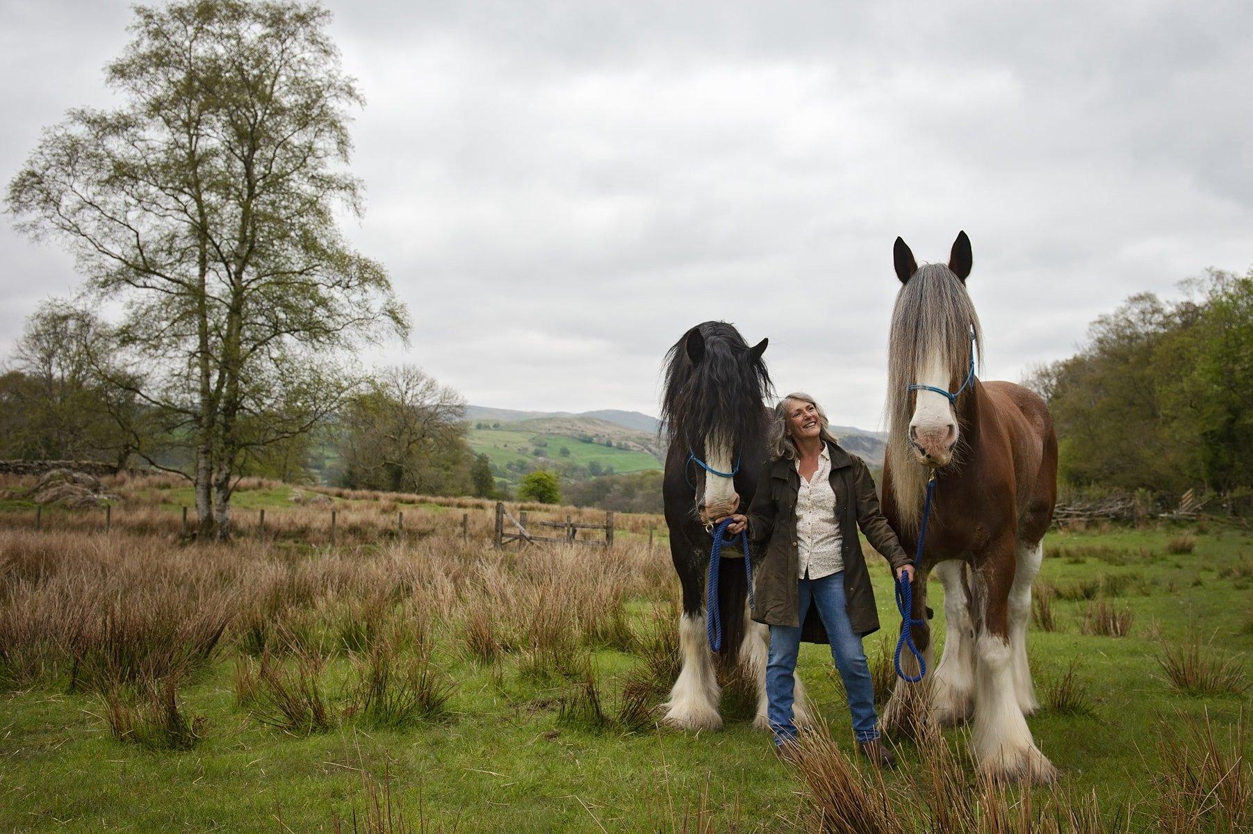 Cumbria equine photoshoots