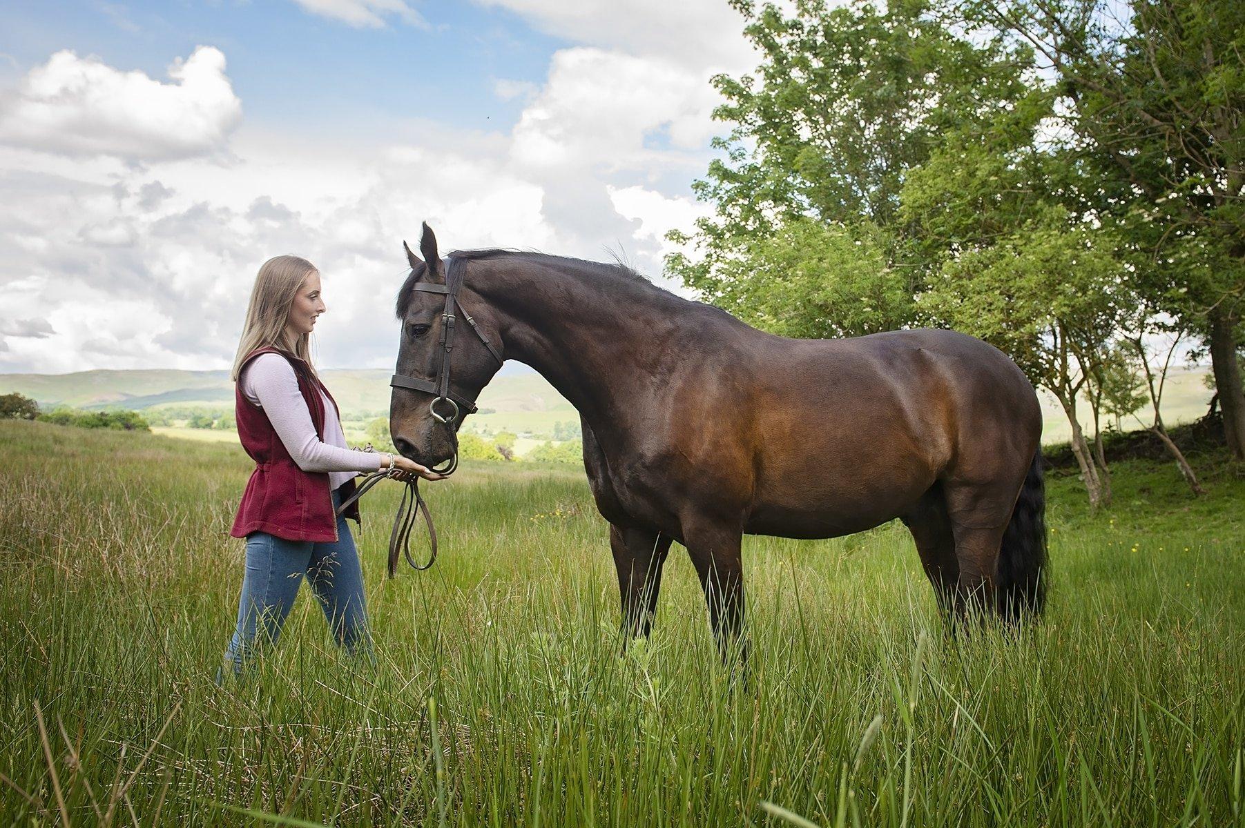 Equine Photoshoots