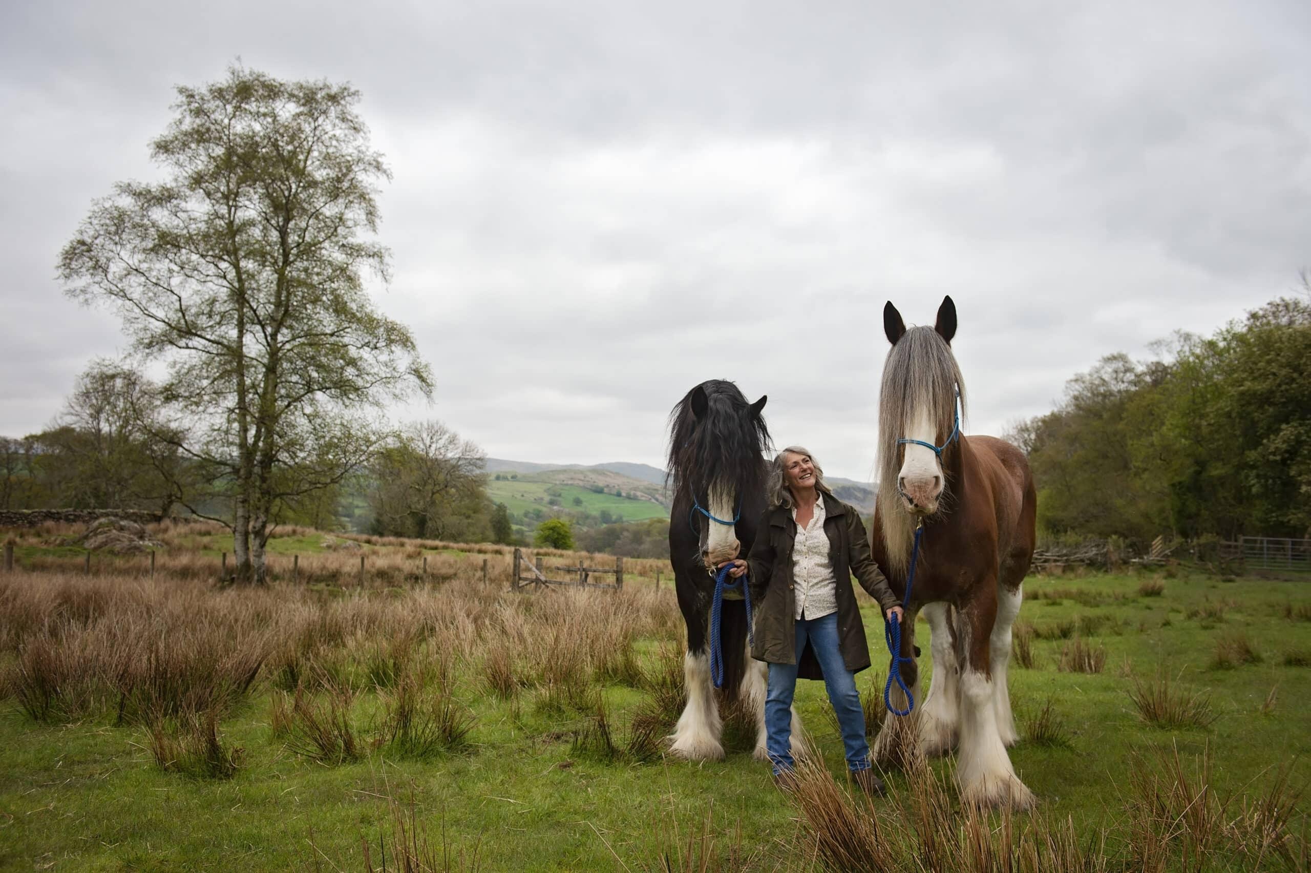 Cumbrian Equine Photoshoot